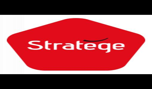 Stratege : Un site au service de tous