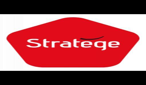 Stratege : Solidarité, clés de la réussite