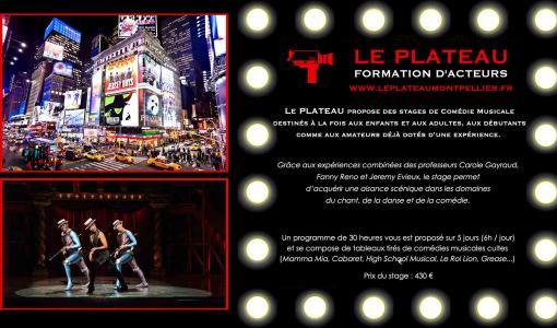 Stages de comédie musicale au Plateau à Montpellier