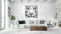 web_salon_tigre_shutterstock_575366365.jpg